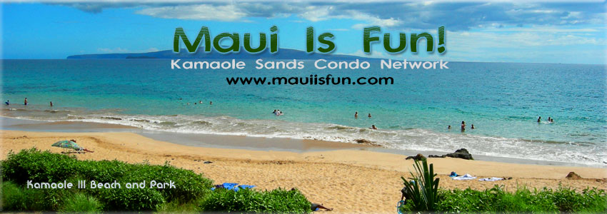 Maui Kamaole Sands Condo - Vacation Rental by Owner